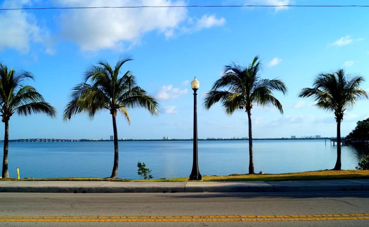 6x heerlijk eten en drinken in Miami