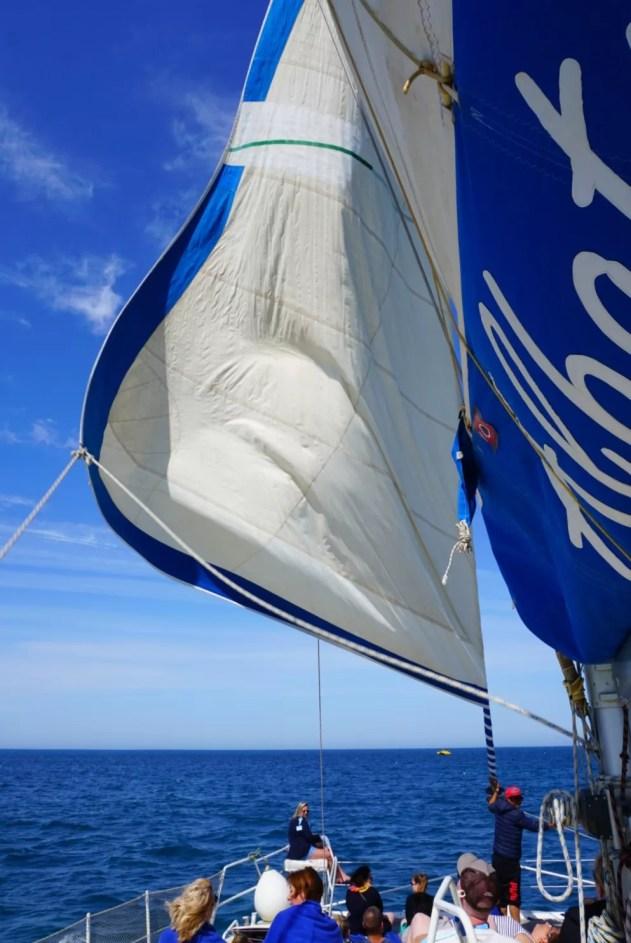 Catamaran Port El Kantaoui Tunesië