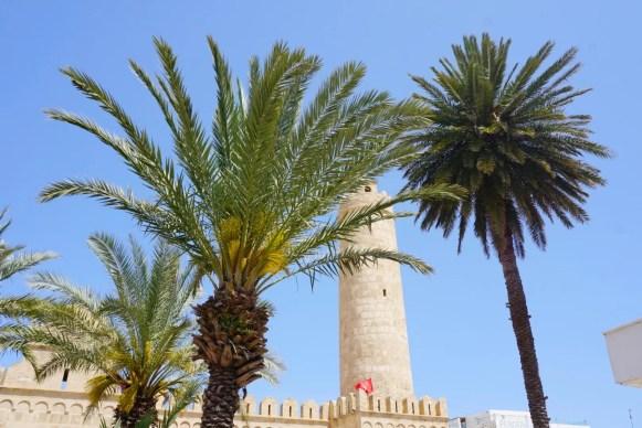 moskee palmbomen Tunesië Sousse