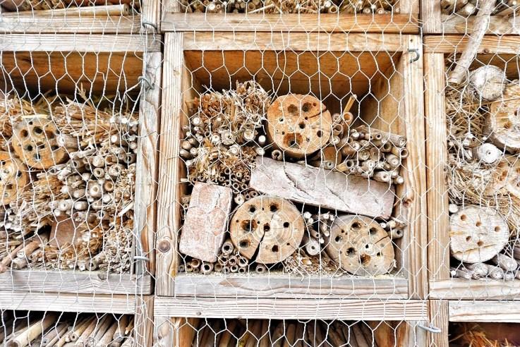 Maasmechelen natuur bijenhotel