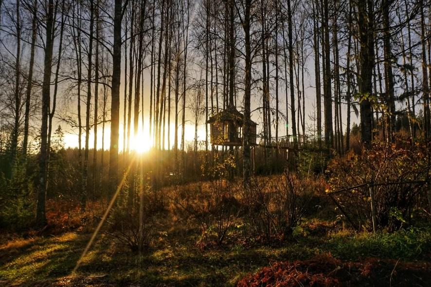 zonsopgang roadtrip zweden