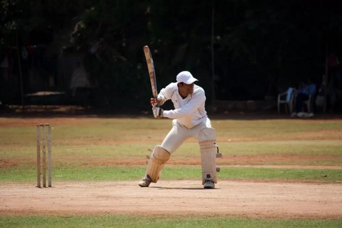 cricket 1669321