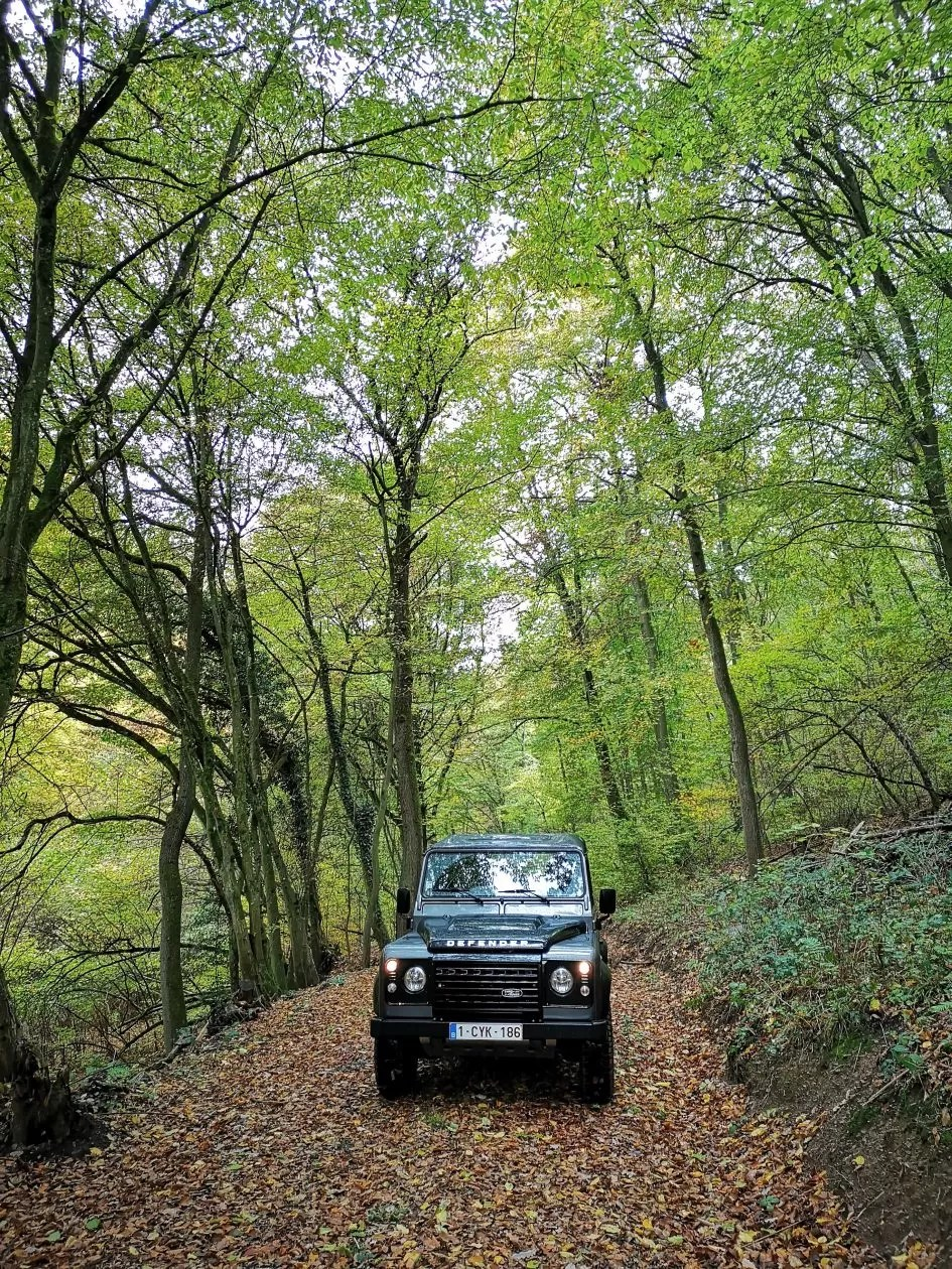 roadtrip door Duitsland land rover bos