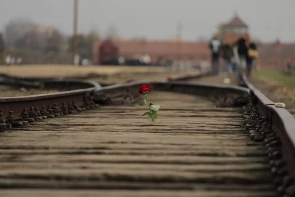 Een aangrijpend bezoek aan Auschwitz