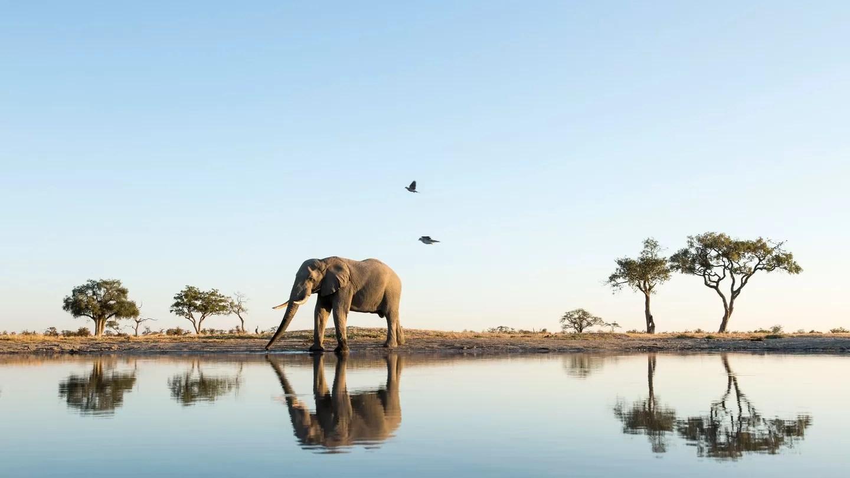 Botswana_GettyImages-534898061