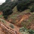 Vetiver contro le erosioni