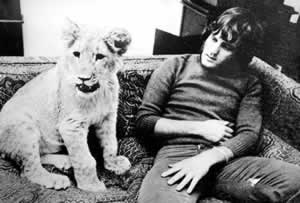 Christian the lion cub hanging out in a flat back in the day.