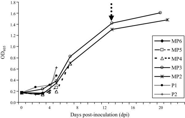 Experimental inoculation study indicates swine as a