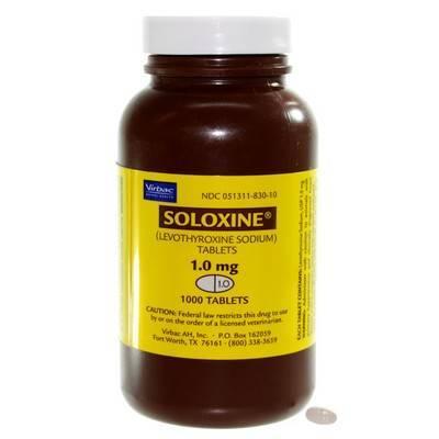 Soloxine: Thyroid Medication Dogs - Levothyroxine ...