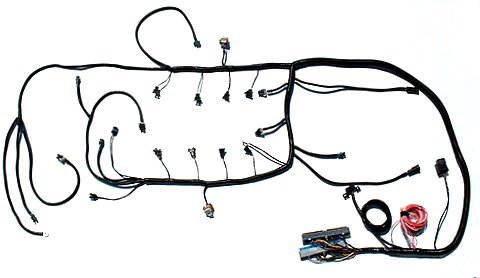 Amerex Wiring Diagram Ls Engine Harness And Accesories Vetteworks Vetteworks