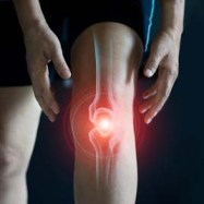 Knee Pain Inflammation
