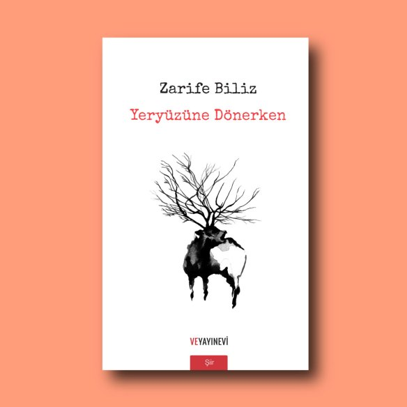 Yeryüzüne Dönerken, Zarife Biliz'in ilk şiir kitabı. Ve Yayınevi, 2018.
