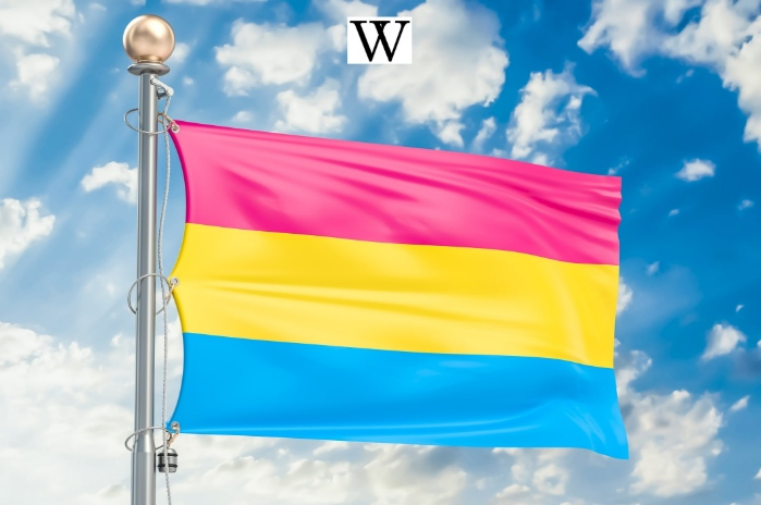 pansexuality, pansexual, bisexual, sexuality, sex toy shop