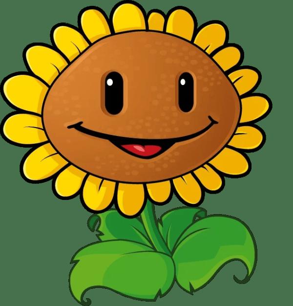 plant sunflower smiling