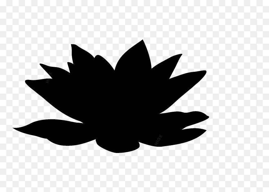 Transparent Colorful Lotus Clipart Floral Design Hd Png Download Vhv