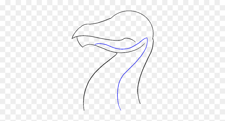 How To Draw Dragon Head Line Art Hd Png Download Vhv