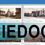 Scientific Documentation for Decisions  The Reconstruction Argumentation Method