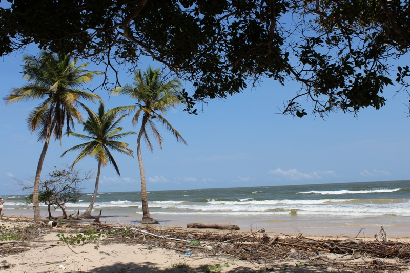 Resultado de imagem para praia da fazenda de sao jeronimo marajo