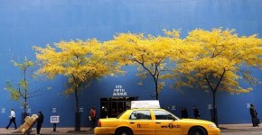 Autunno a New York: shopping e passeggiate