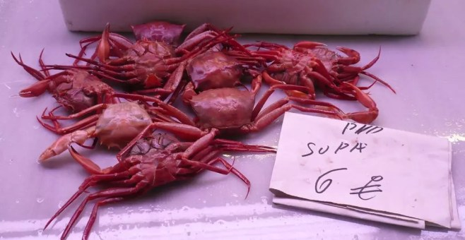 Mercato Carolinas ad Alicante, acquisti alimentari
