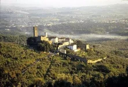 Aperitivo sul Montalbano: campagna toscana e buon vino