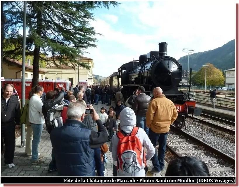 treno-a-vapore