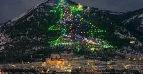 Natale a Gubbio con l'Albero da record: cosa vedere in Umbria