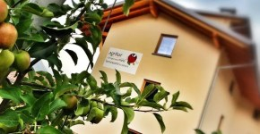 Estate in Val di Sole con l'Opportunity Card
