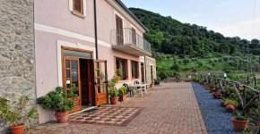 Dove Mangiare in Calabria: Agriturismo Aru Castagnu
