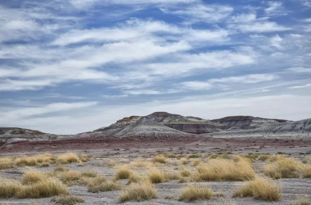 arizona-foresta-pietrificata