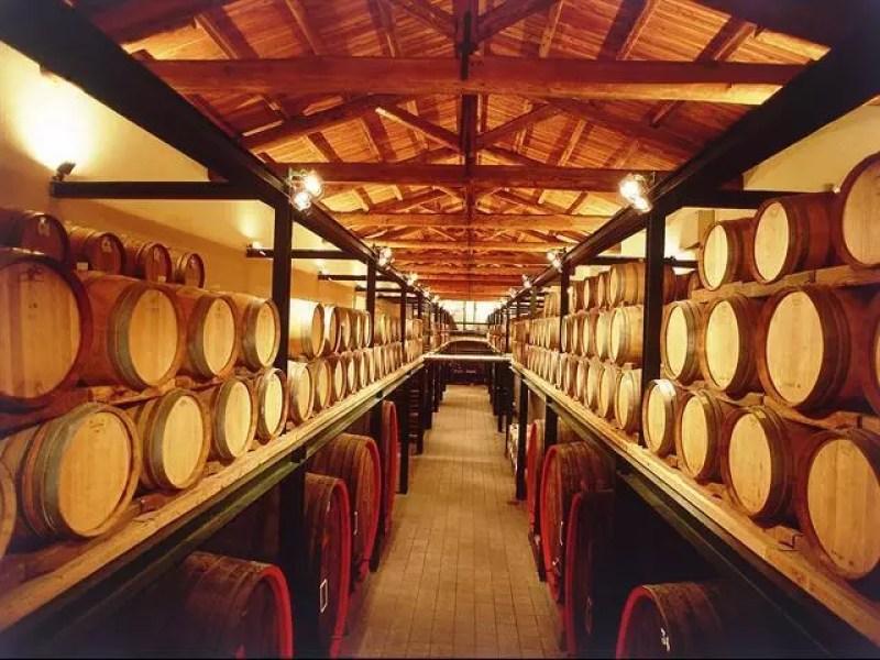 piemonte-cordero-di-montezemolo-vino
