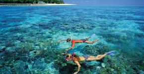 Weekend lungo a Cairns, escursioni da fare