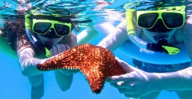 5 luoghi dove fare snorkeling a Perth