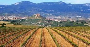 Zona dei vini della Rioja