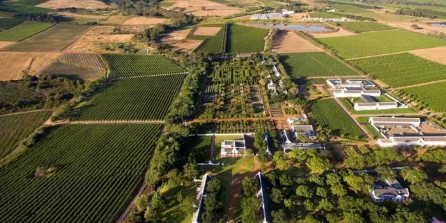 Visita a BabylonStoren, nelle Winelands sudafricane