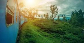 Sri Lanka: 3 esperienze da non perdere