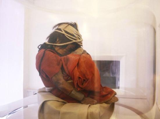 el niño al museo archeologico d'alta montagna di salta