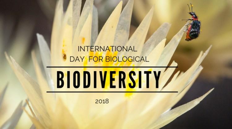 giornata mondiale della biodiversità ONU