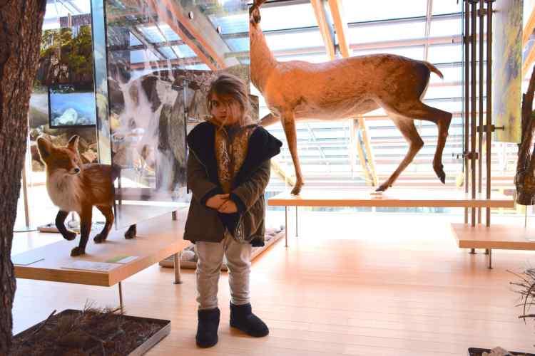 Andrea tra gli animali del MUSE Museo delle Scienze di Trento