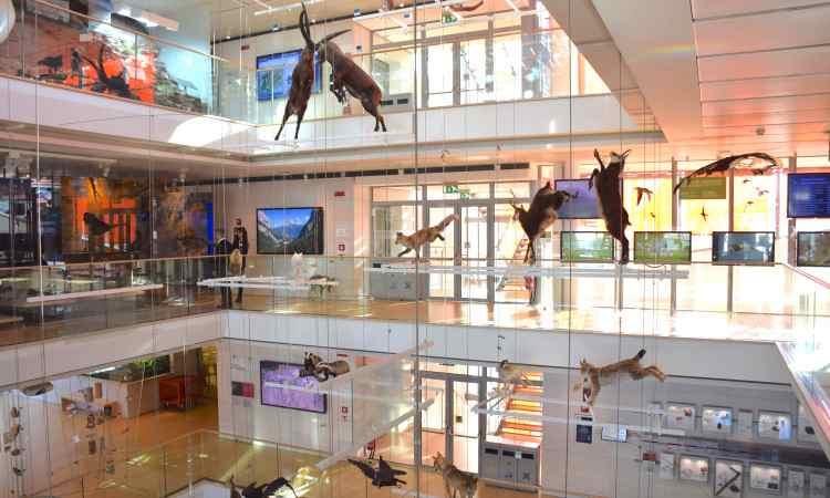 la montagna di Renzo Piano al MUSE Museo delle Scienze di Trento