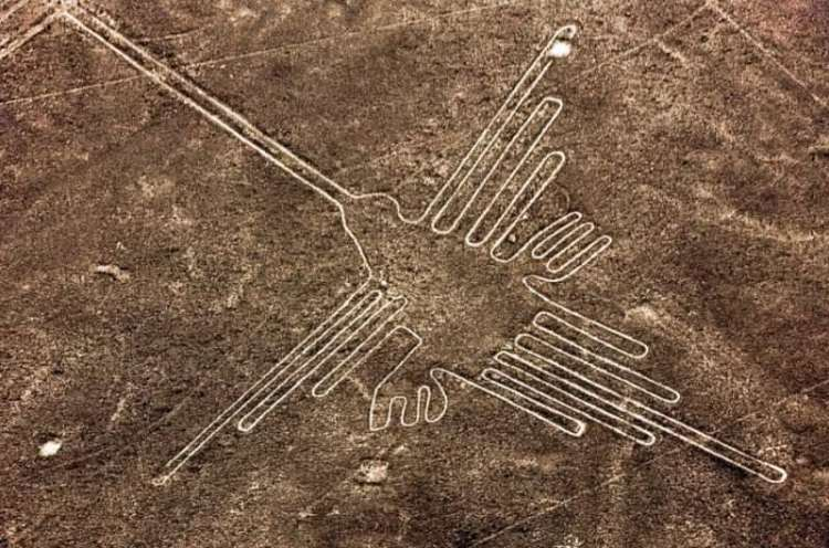 il colibrì figura delle Linee di Nazca