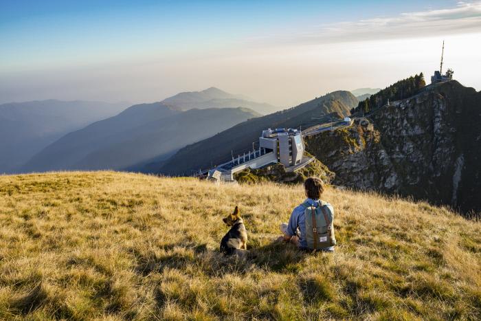 il Fiore di Pietra sul Monte Generoso nel Canton Ticino Szizzera