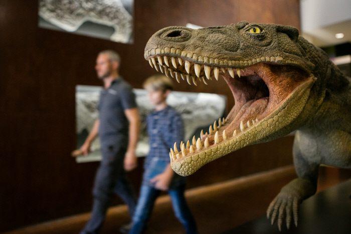Museo dei Fossili sul Monte San Giorgio in Canton Ticino