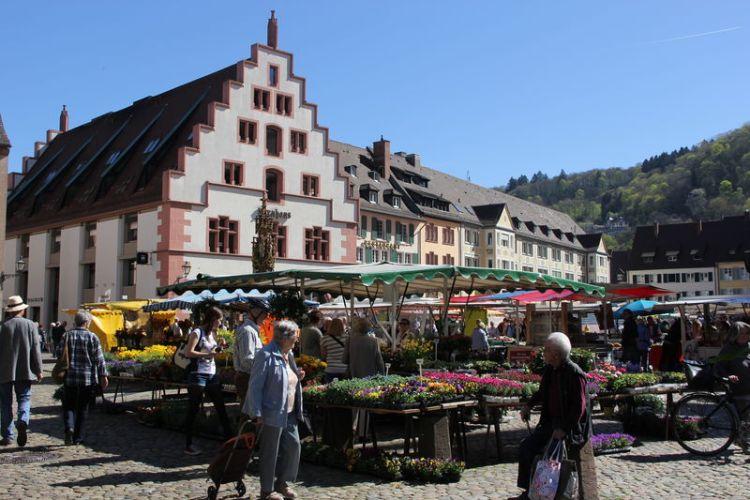 Il Kornhaus Granaio di Friburgo