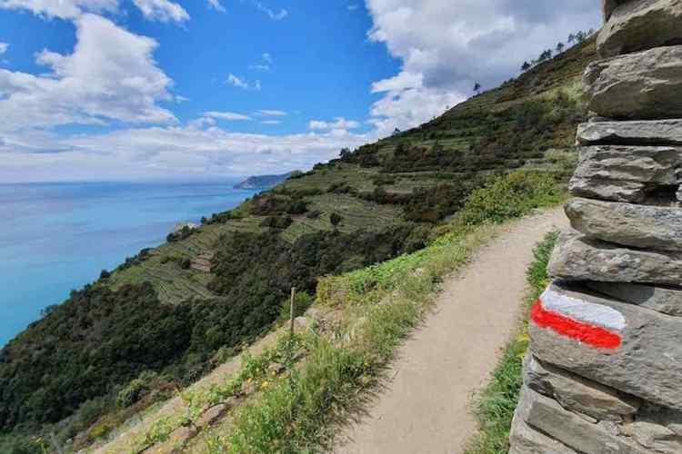 trekking nella natura delle cinque terre