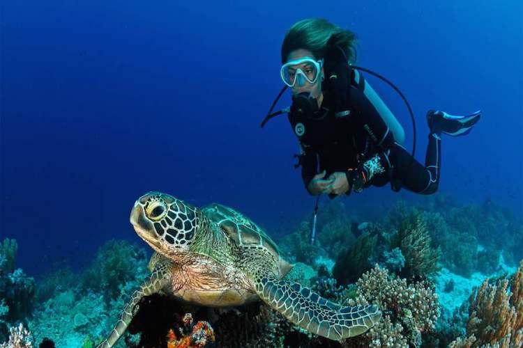 diving sul fondale di panarea isole eolie