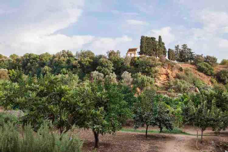 giardino kolymbethra valle dei templi agrigento fai