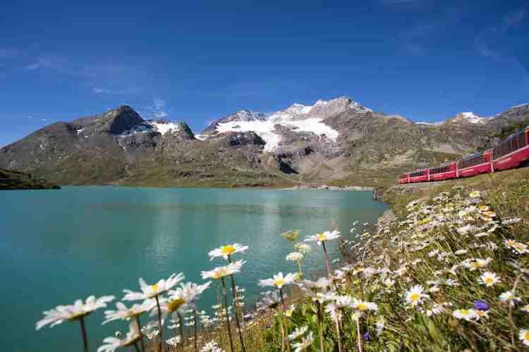 il trenino del bernina a lago bianco