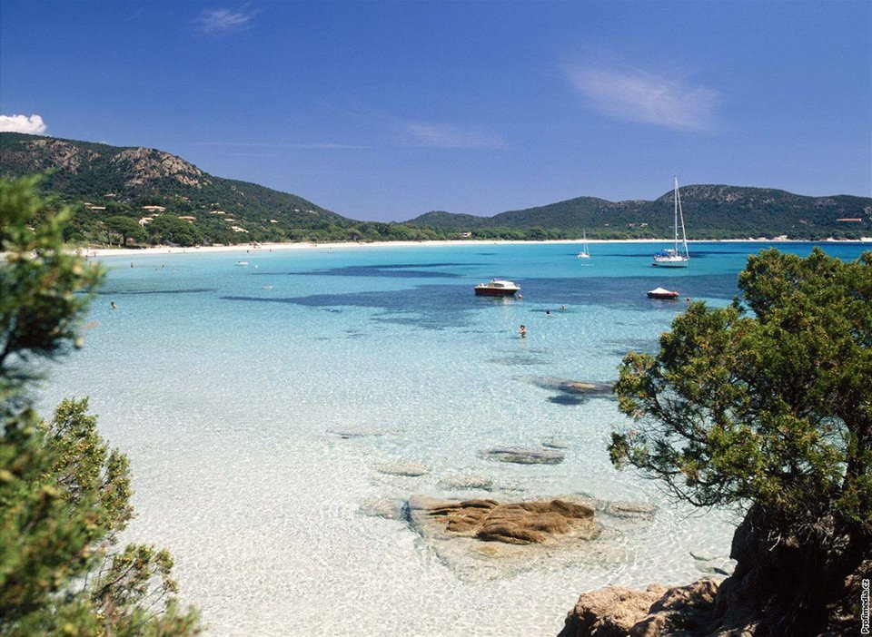 Quali sono le spiagge in Corsica per cani  Viaggiamo