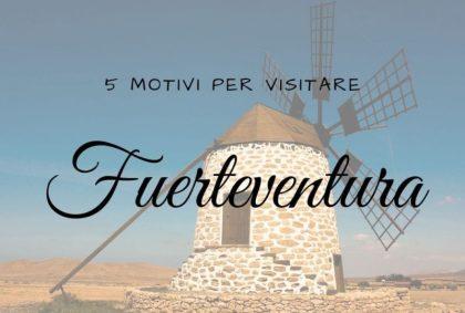 5 motivi per visitare Fuerteventura